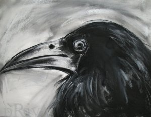 crow malayalam House crow ( corvus splendens) zoonomen - zoological nomenclature resource: corvus splendens zoonomen - zoological nomenclature  malayalam:.