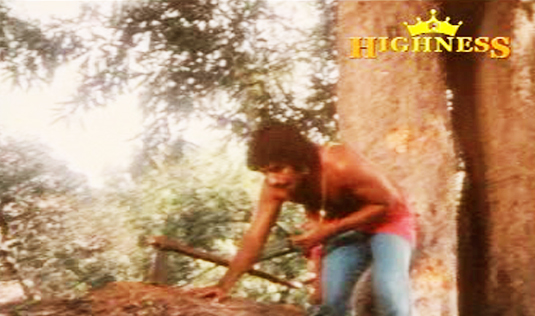 Satyavan falls in Satyavan Savithri (1977)