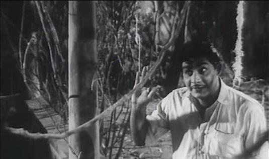 Madhu in Bhargavinilayam (1964)